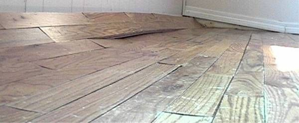 The oak floor planks continue to swell and buckle from water saturation.